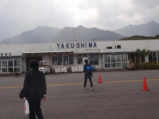 yaku_001.jpg